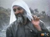 Талибы разрабатывают план по освобождению семьи бин Ладена