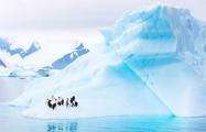 Ученые: Маори могли открыть Антарктиду на 1000 лет раньше европейцев