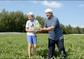Беларусь планирует собрать хороший урожай арбузов