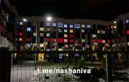 Жители Новой Боровой устроили протест невидимок