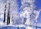 Исследование: Снежань - месяц с неповторимым названием