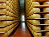 Итальянцы купили 15 тонн пармезана через Facebook