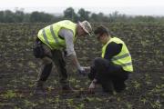 Нидерланды завершили расследование падения «Боинга» на Украине