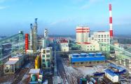 «Китайскому» заводу в Светлогорске выделят из бюджета до 100 миллионов рублей