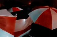 Жители Дзержинска прошлись маршем с огромным бело-красно-белым флагом