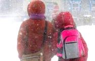 В Беларуси закроют школы при -25°C