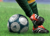 Фанаты «Шахтера» бойкотируют матчи из-за милиции