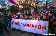 Власти Беларуси отреагировали на «тунеядскую» жалобу в ООН