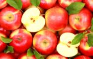 Из Беларуси в РФ пытались ввезти тайными тропами более 100 тонн польских яблок