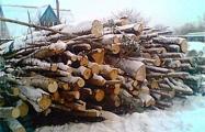 Пенсионера в Молодечно отправили колоть дрова за $0,75 в час