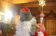 Видеофакт: Журналист «Белсата» переоделся в Деда Мороза, чтобы попасть к главе «Белэнерго»
