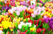 Что значит «быть мужиком»: версия продавцов тюльпанов