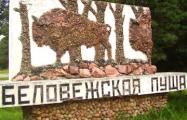 В Европе покажут фильм о Беловежской пуще