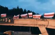 Ангарские партизаны вместе с гостями из Тракторного поселка провели совместную акцию