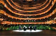 Барселонская опера устроила концерт для растений