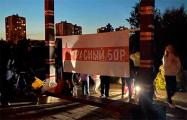 Жители Красного бора в Минске вышли на акцию солидарности