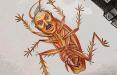 Видеофакт: Белорусы сжигают таракана