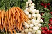 Государство выделит населению 1,7 триллиона рублей на закупку сельхозпродукции